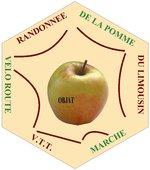 Logo_hexagone_rando_pomme