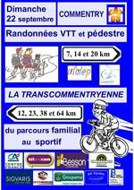 Affiche_transcommentryenne_2013